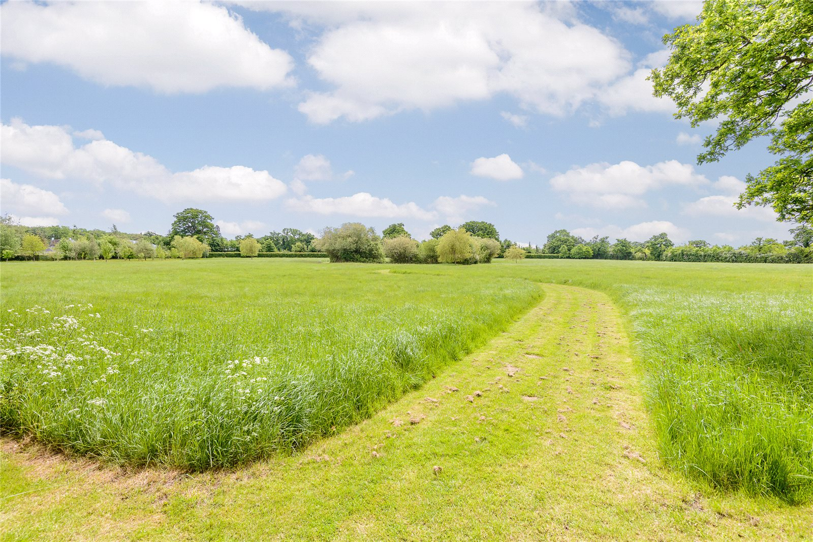 Additional photo for property listing at Winkfield Lane, Winkfield, Berkshire, SL4 Winkfield, Αγγλια