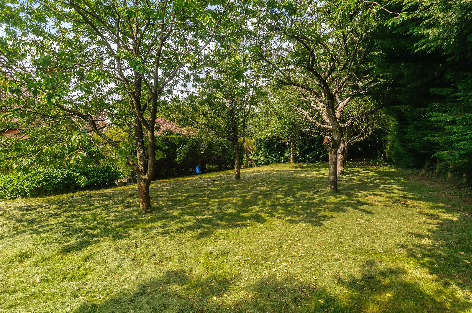 Additional photo for property listing at Forest Road, Warfield, Berkshire, RG42 Warfield, 英格蘭