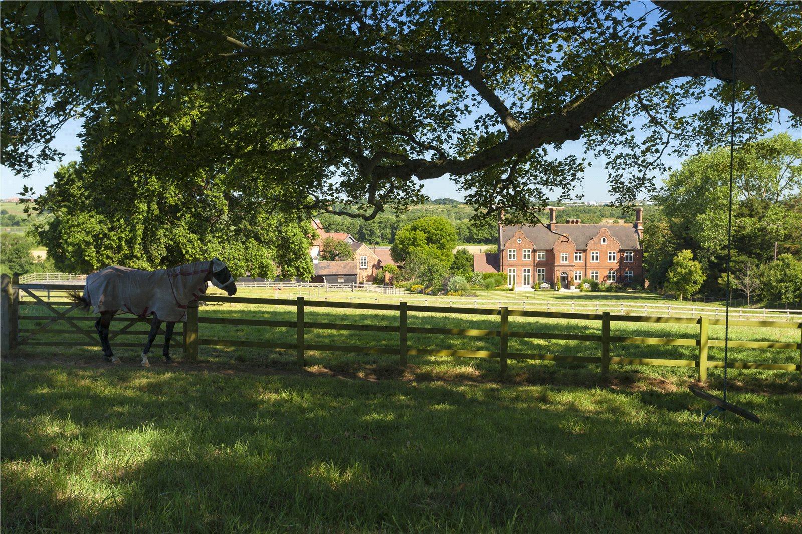 獨棟家庭住宅 為 出售 在 Stodmarsh, Canterbury, Kent, CT3 Canterbury, 英格蘭