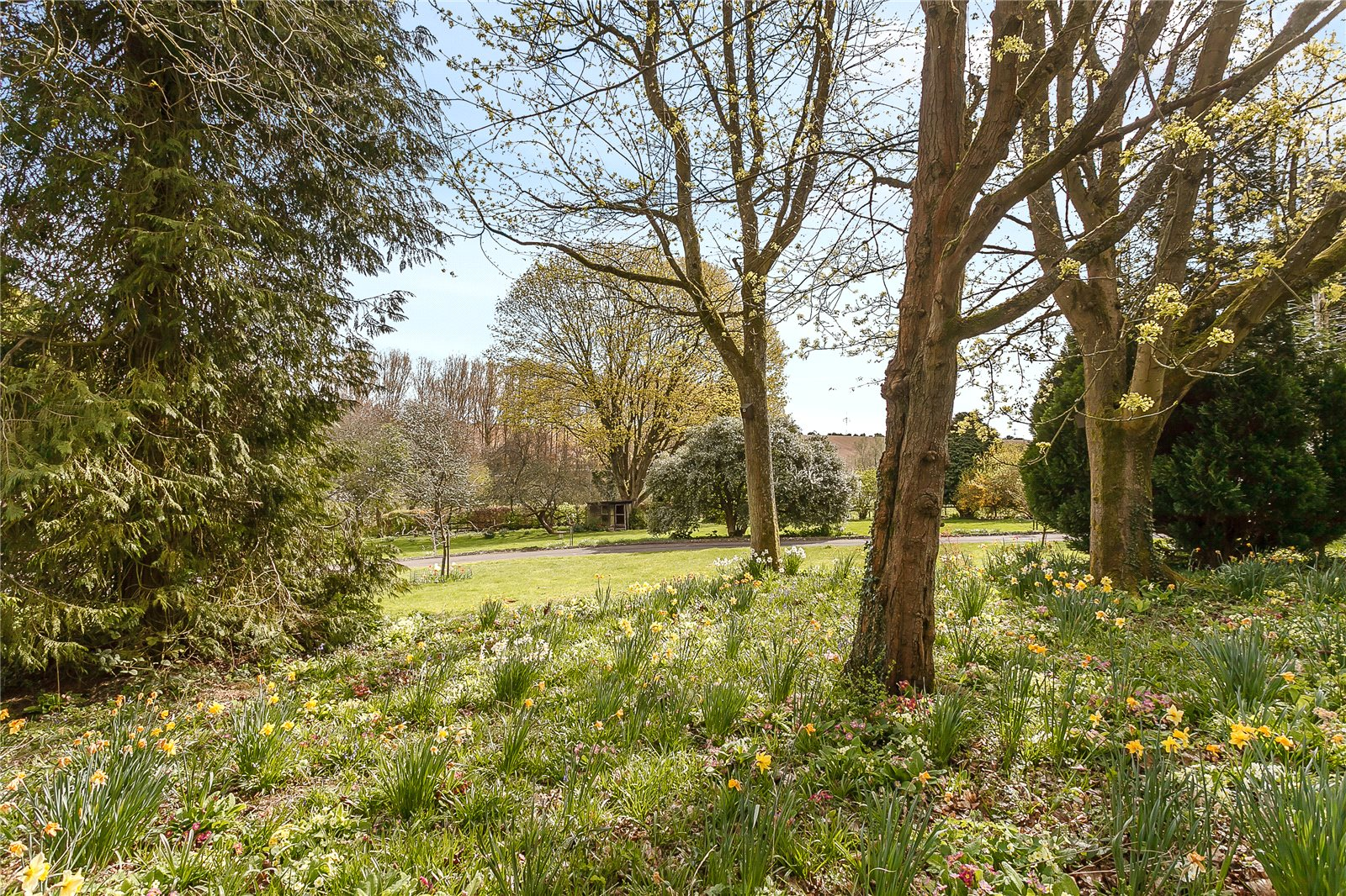 Additional photo for property listing at Perrotts Brook, Cirencester, Gloucestershire, GL7 Cirencester, Inglaterra