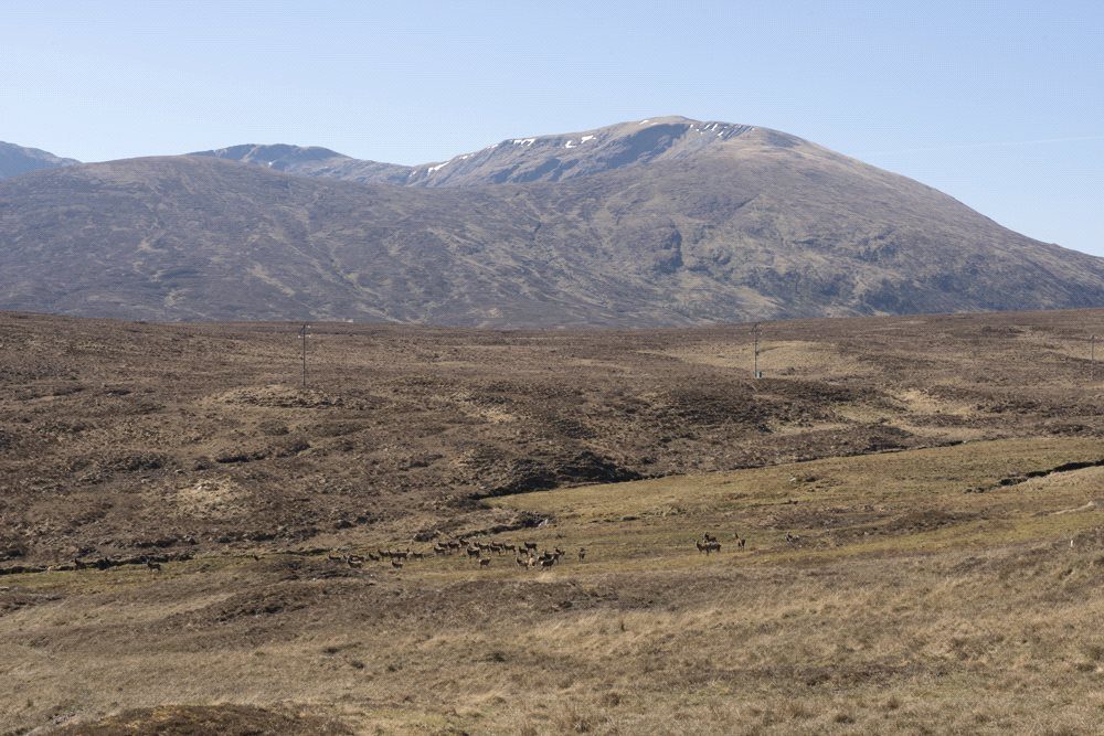 Additional photo for property listing at Achnasheen, Wester Ross, IV22 Scotland