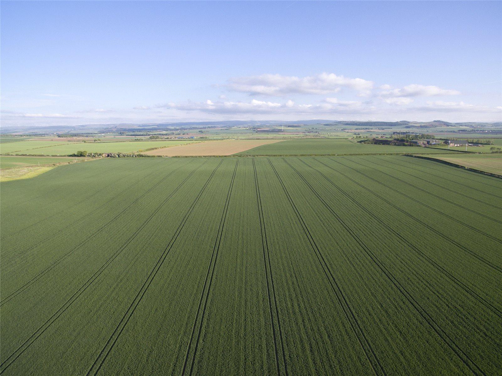Fazenda / Quinta / Rancho / Plantação para Venda às Kingston, North Berwick, East Lothian, EH39 East Lothian, Scotland