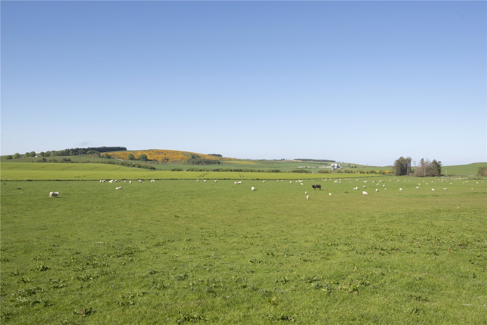 Additional photo for property listing at Castlecraig Farm, Nigg, Tain, Ross-Shire, IV19 Scotland