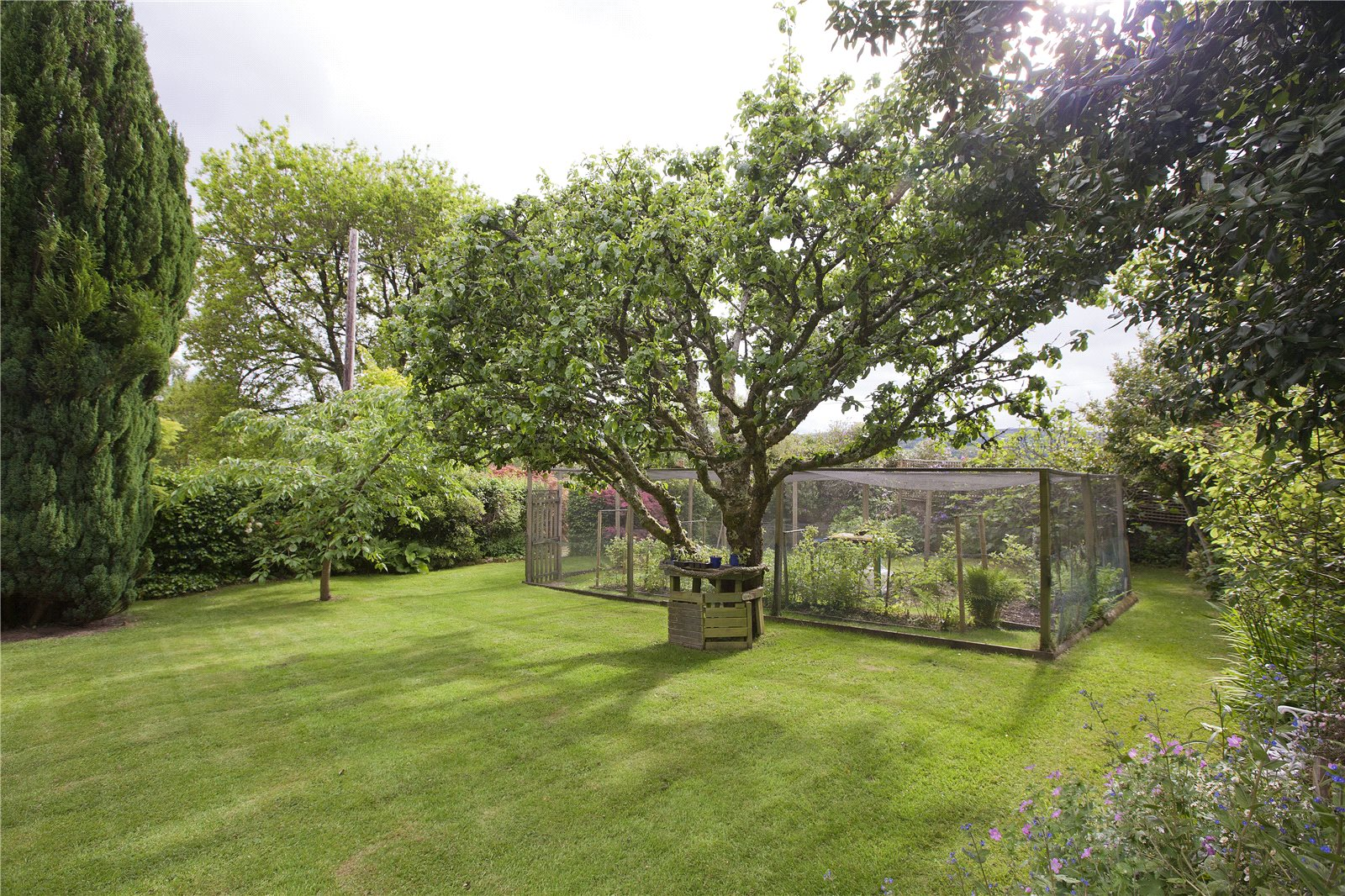 Additional photo for property listing at Bovey Tracey, Newton Abbot, Devon, TQ13 Newton Abbot, England