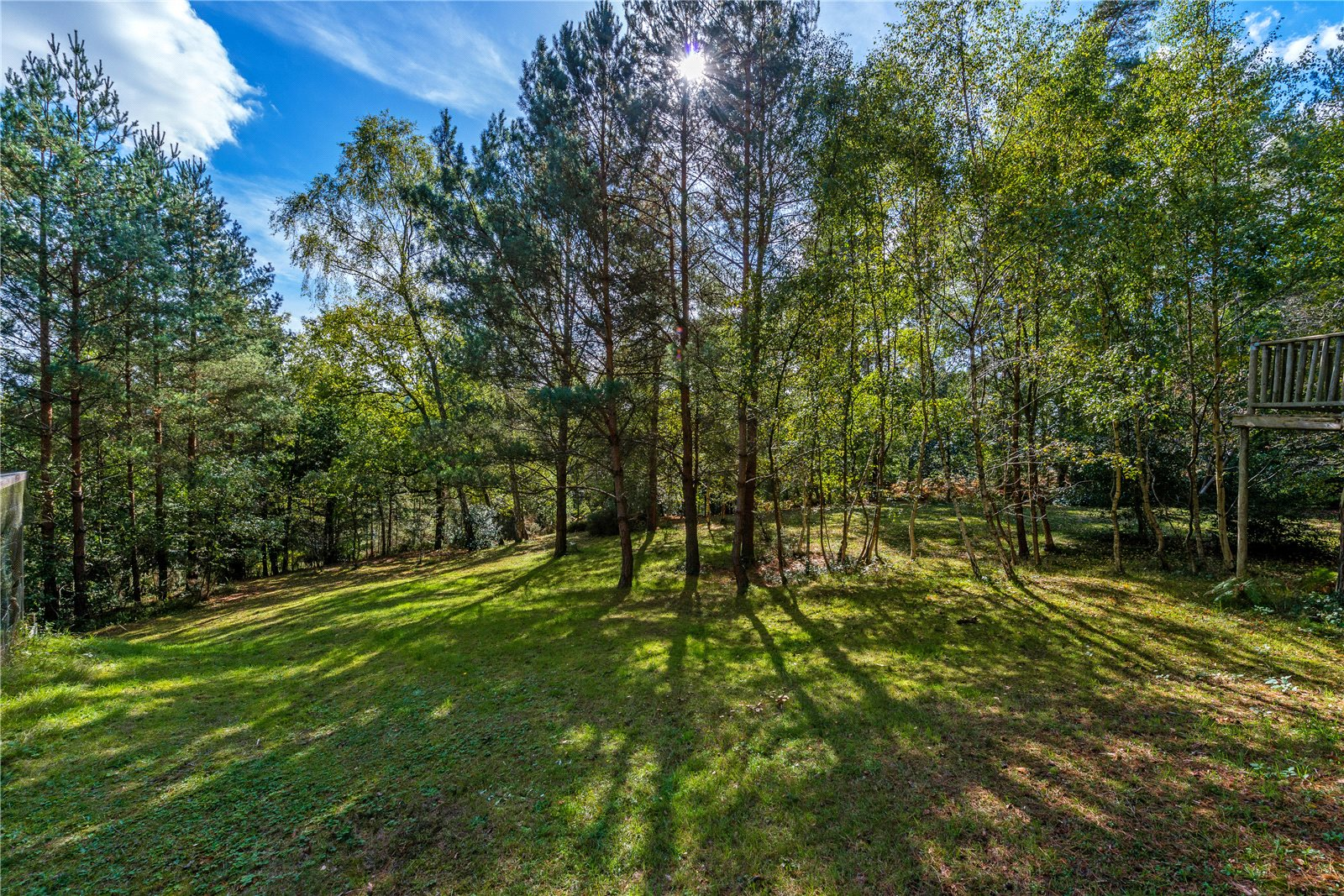 Additional photo for property listing at Dene Lane, Lower Bourne, Farnham, Surrey, GU10 Farnham, England