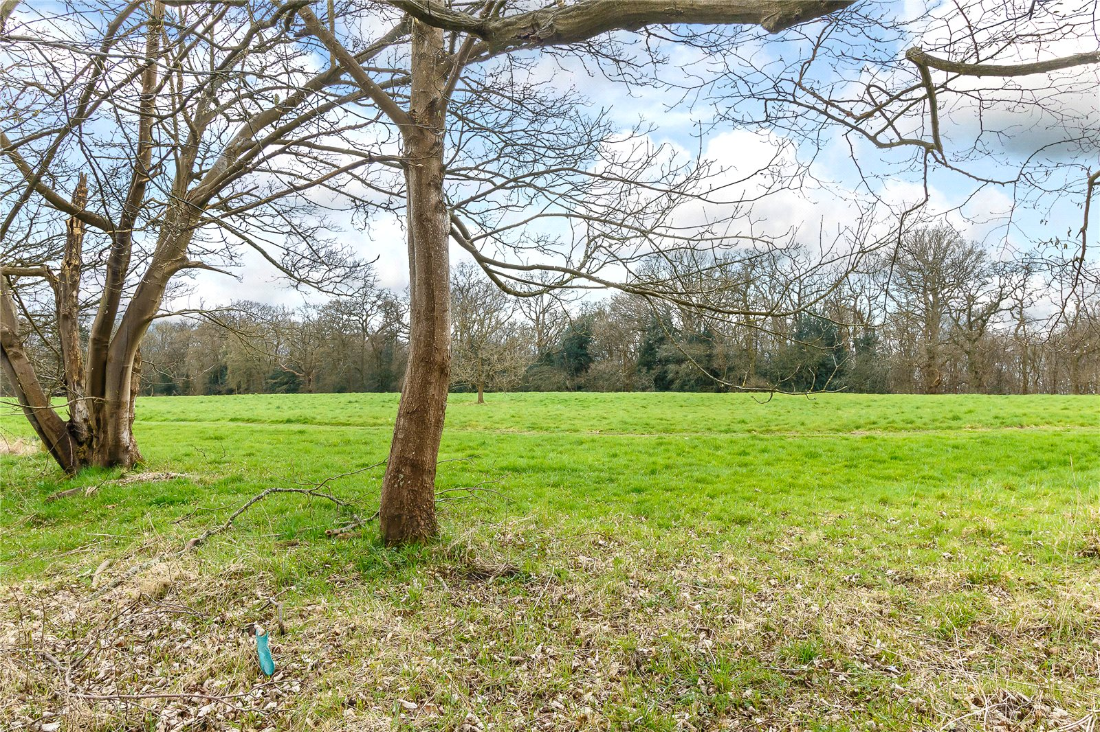 Additional photo for property listing at Nightingales Lane, Chalfont St Giles, Buckinghamshire, HP8 Chalfont St Giles, Αγγλια
