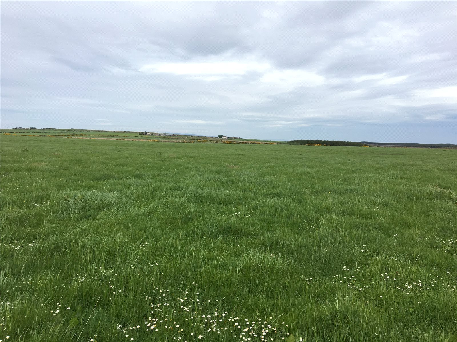 Additional photo for property listing at Lochend Holding, Barrock, Thurso, Caithness, KW14 Scotland