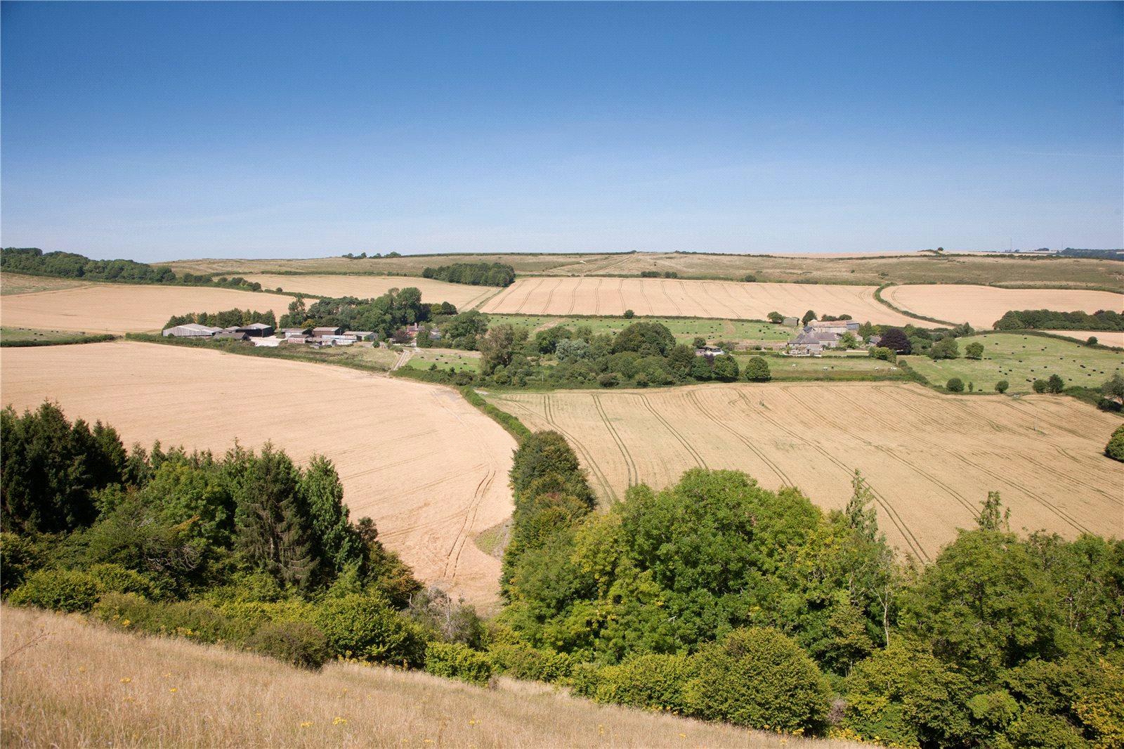 Nông trại / Trang trại / Vườn vì Bán tại Melcombe Farm, Melcombe Bingham, Dorchester, Dorset, DT2 Dorchester, Anh Quốc