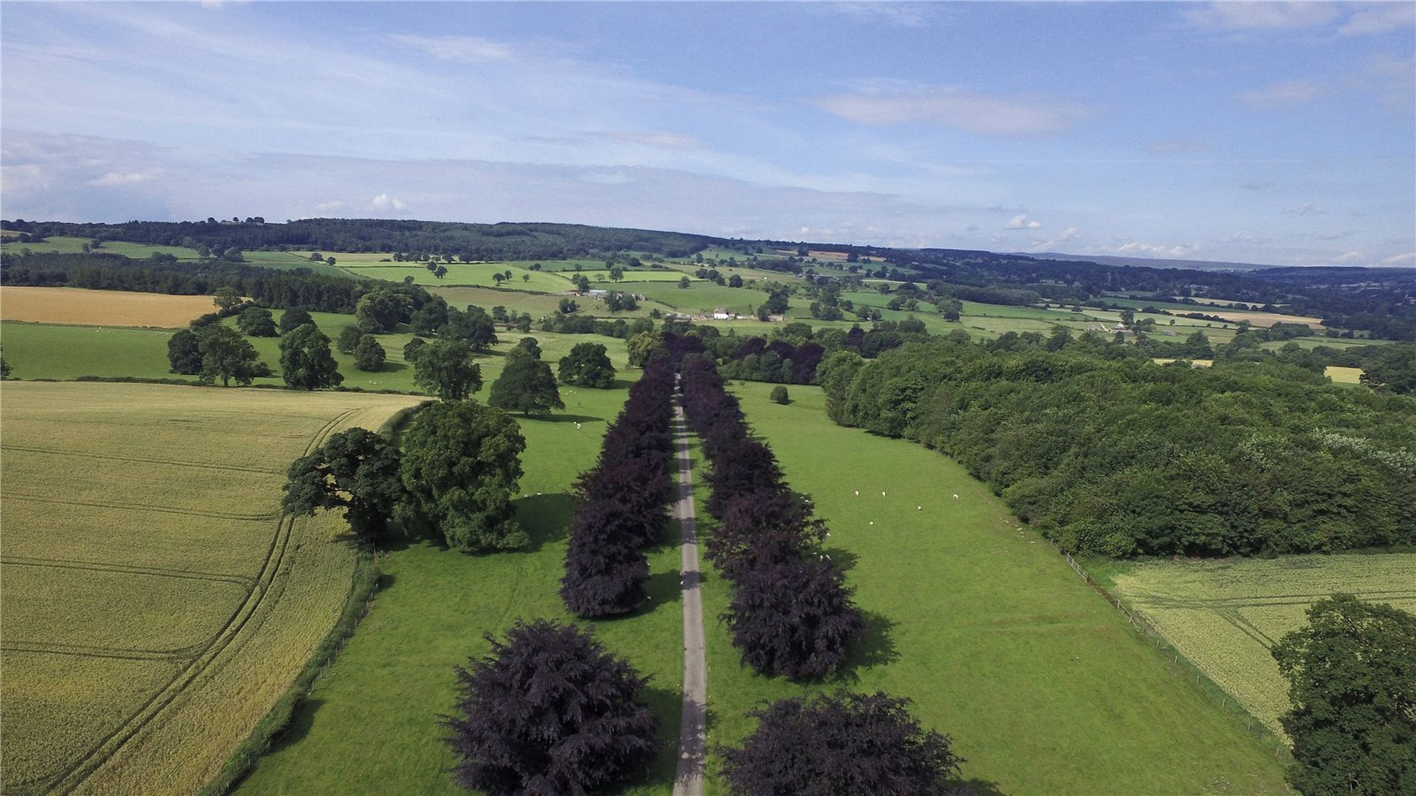 Additional photo for property listing at Aldburgh, Masham, North Yorkshire, HG4 Masham, England