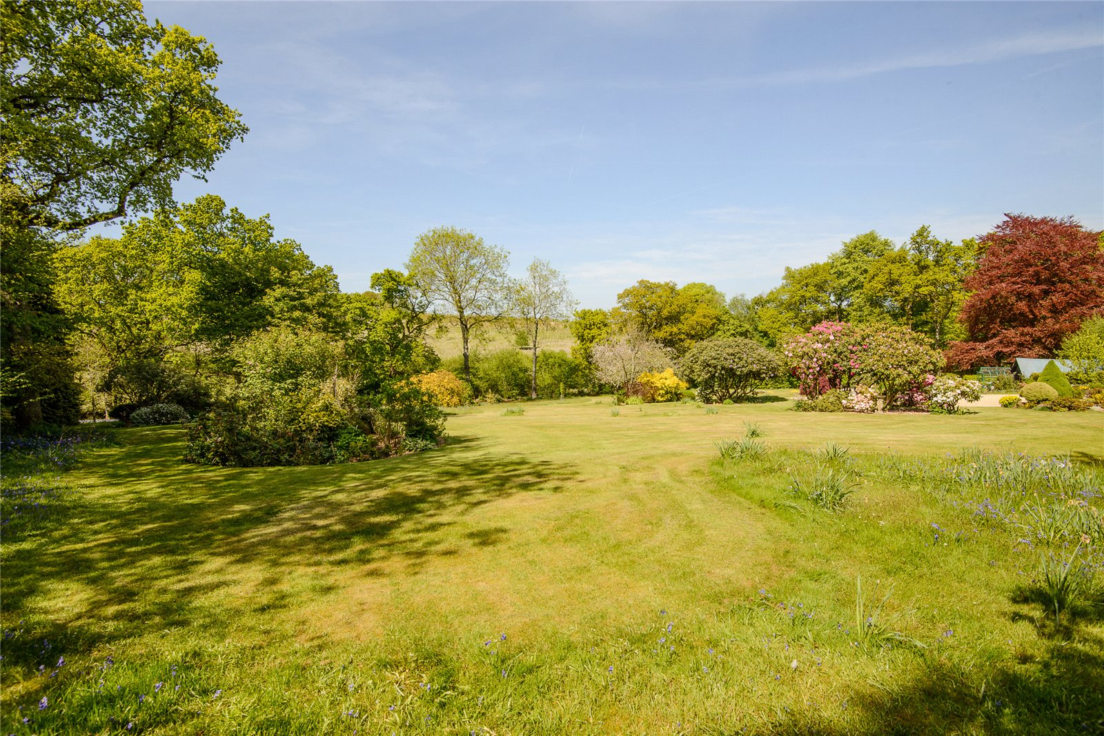 Additional photo for property listing at Powntley Copse, Alton, Hampshire, GU34 Alton, 英格兰