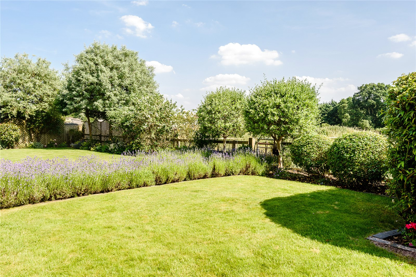 Additional photo for property listing at Knappswood Close, Upper Basildon, Reading, Berkshire, RG8 Reading, Inglaterra