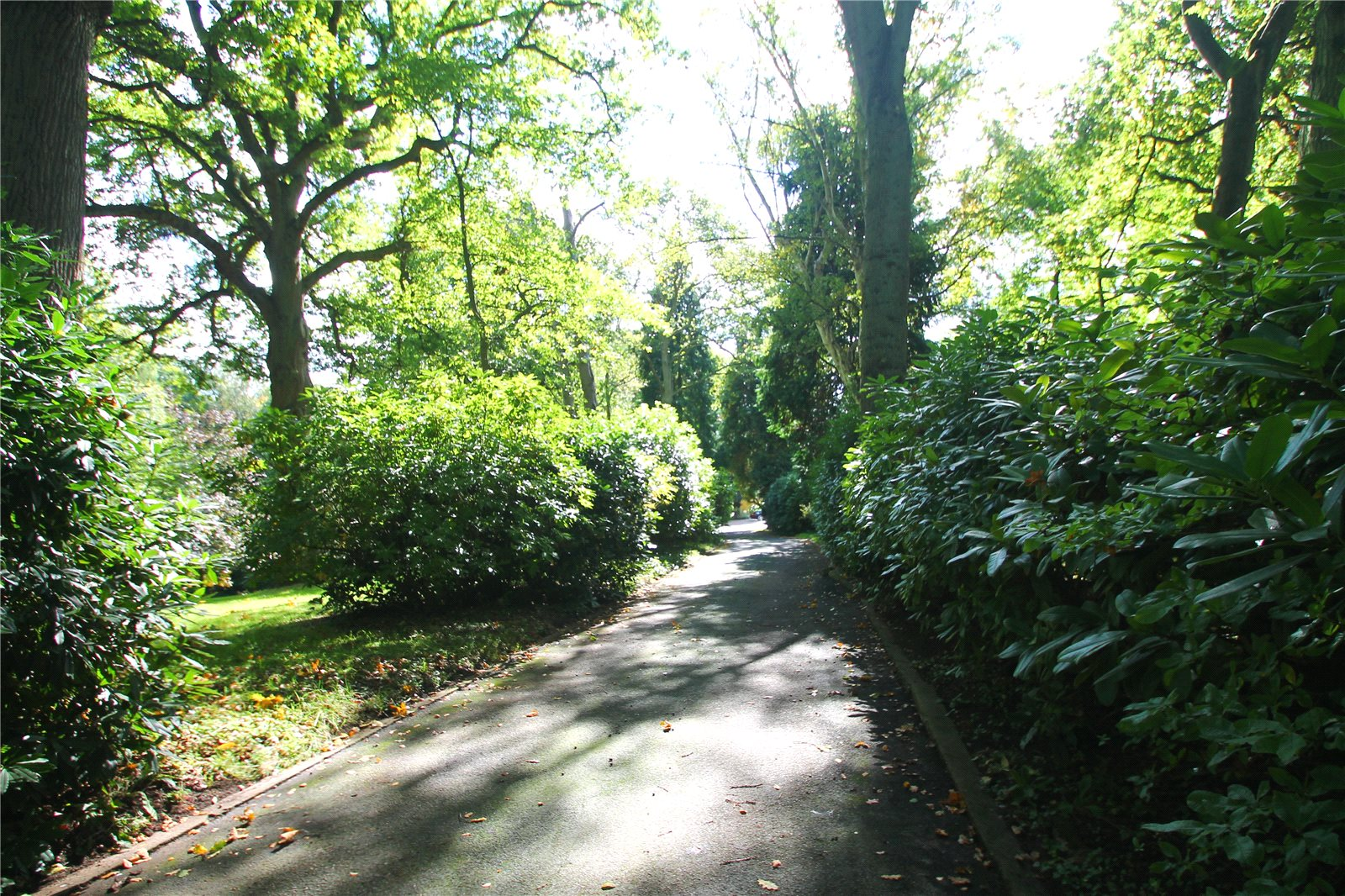 Additional photo for property listing at Clay Hill, Beenham, Reading, RG7 Reading, Ingiltere