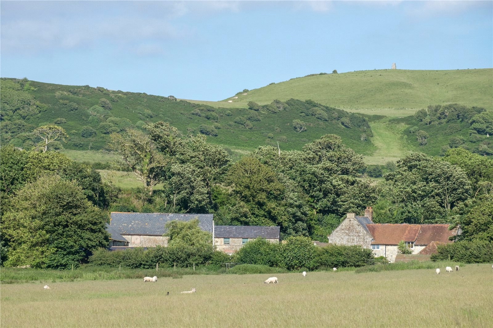 Additional photo for property listing at Whitwell Road, Whitwell, Godshill, Isle of Wight, PO38 Godshill, イギリス