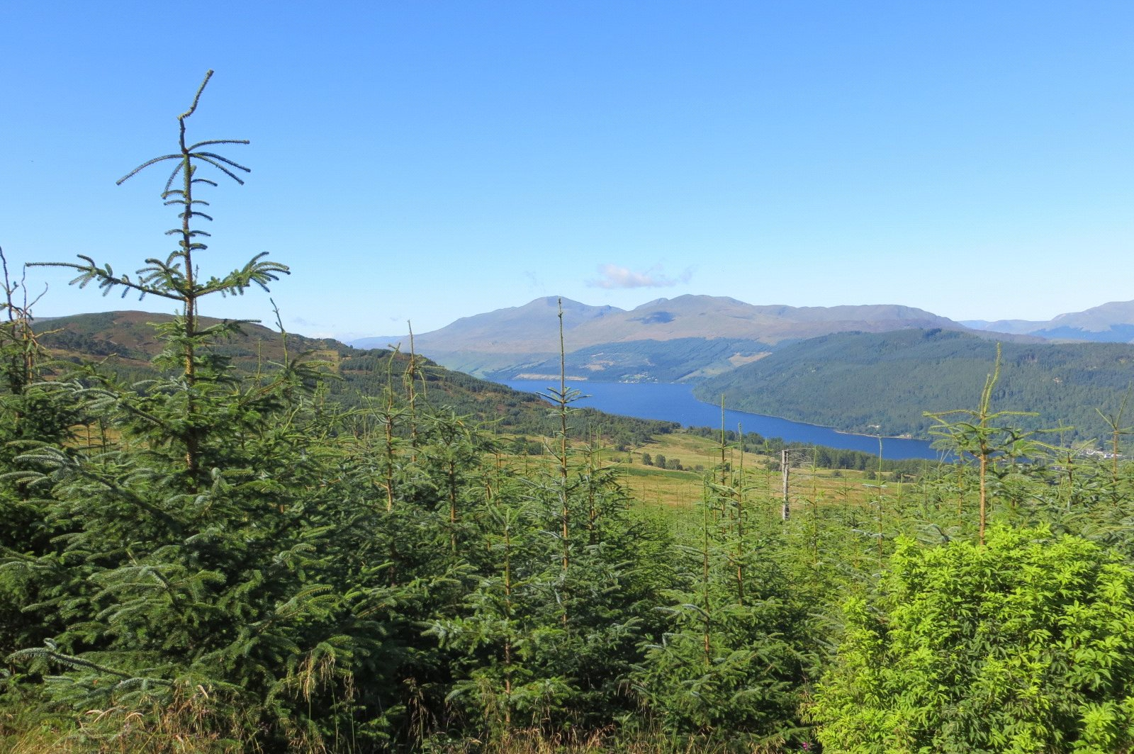 Additional photo for property listing at Bolfracks Estate, Aberfeldy, Perthshire, PH15 Perthshire, Scotland
