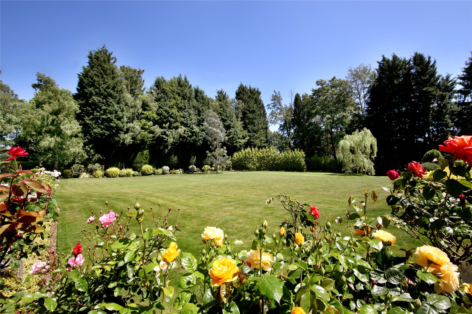 Additional photo for property listing at Coronation Road, Ascot, Berkshire, SL5 Ascot, 英格兰