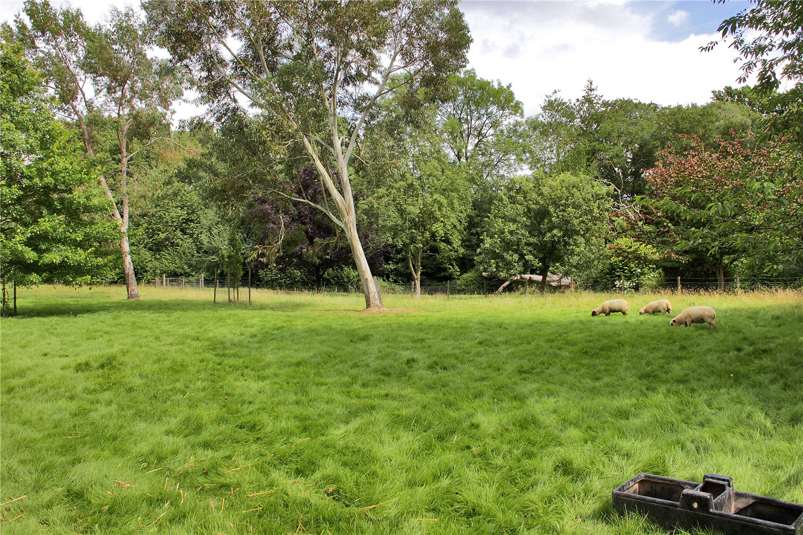 Additional photo for property listing at Shernden Lane, Marsh Green, Edenbridge, Kent, TN8 Edenbridge, 英格蘭